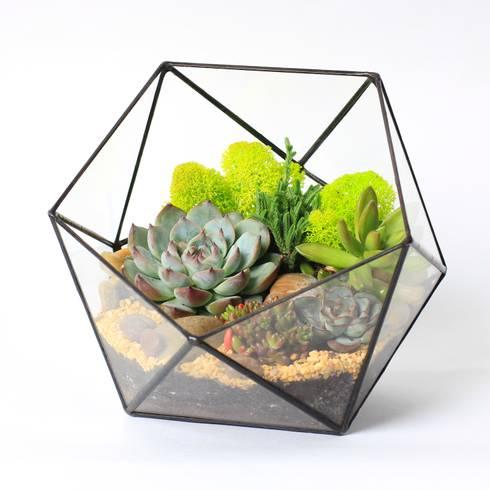 Projekty,  Zieleń wewnątrz zaprojektowane przez Mini Nature