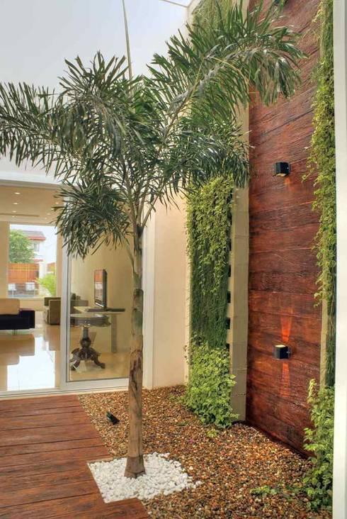 Jardines de invierno de estilo moderno de Penha Alba Arquitetura e Interiores