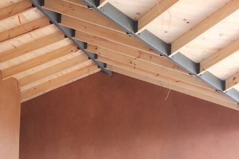 CASA CASTILO HEPP: Paredes de estilo  por ALIWEN arquitectura & construcción sustentable