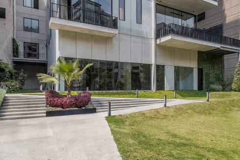 Tabachines 40: Jardines de estilo minimalista por PHia