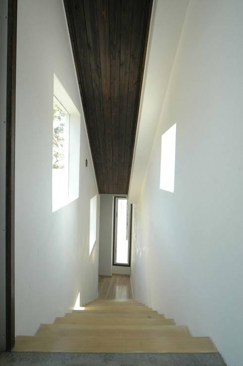 リビングから階段を下りて、寝室のあるスペースへ。: 仁設計が手掛けた玄関&廊下&階段です。