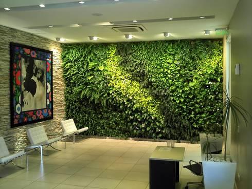 Jardines verticales de l s arquitectos homify for Jardines verticales casa
