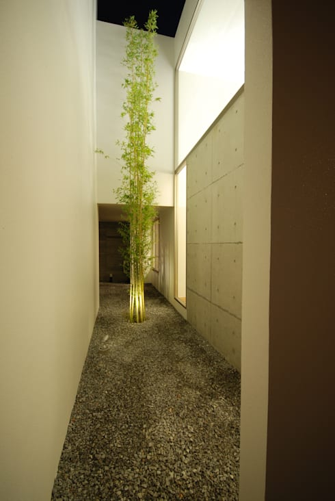 門一級建築士事務所의  정원