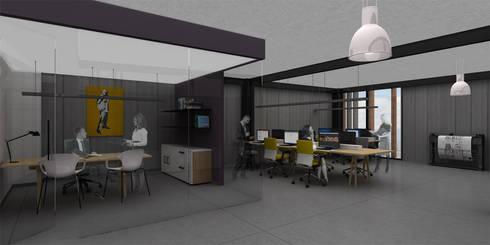 Ramtol - RIMA Arquitectura: Estudios y oficinas de estilo moderno por RIMA Arquitectura