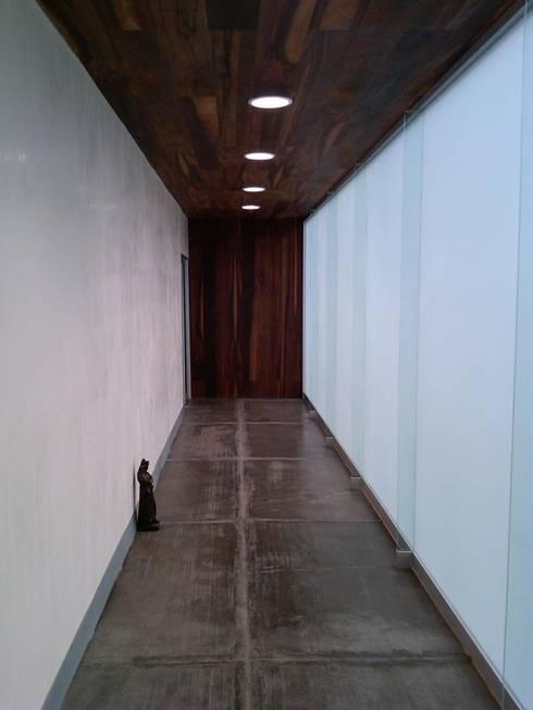Show Room Hera Apparel: Estudios y oficinas de estilo moderno por CCA|arquitectos