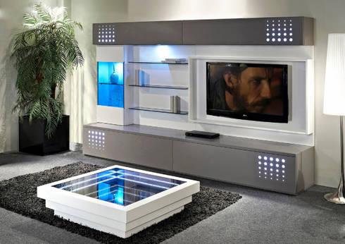 Salas de estar modernas Modern living rooms www.intense-mobiliario.com  TECNIKAA http://intense-mobiliario.com/pt/salas-de-estar/3036-sala-de-estar-tecnikaa.html: Sala de estar  por Intense mobiliário e interiores;