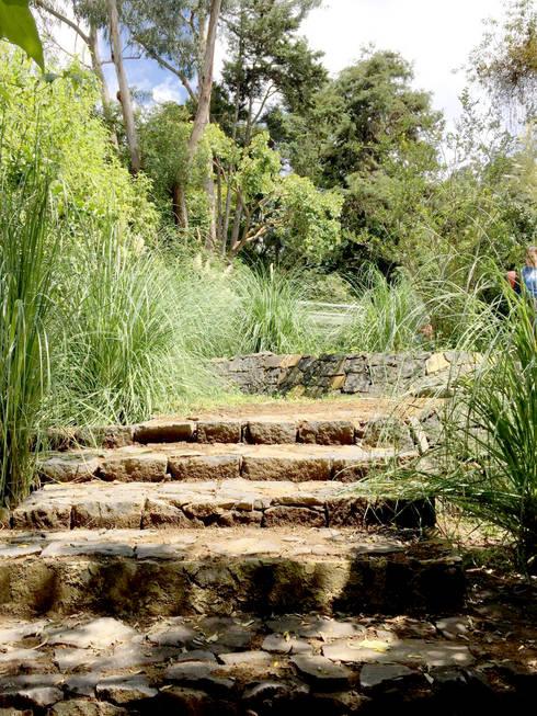 Jardín privado: Jardines de estilo moderno por Paisaje Radical