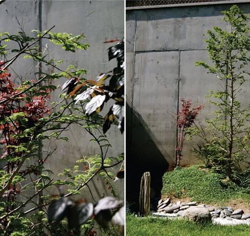 Adosado barcelona de tinda s project s l homify for Jardines zen exterior