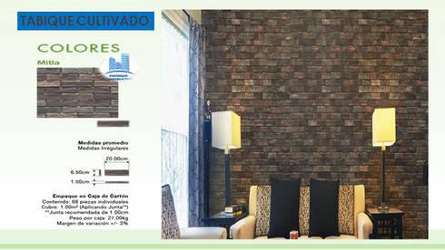 TABIQUE CULTIVADO: Paredes y pisos de estilo moderno por ENFOQUE CONSTRUCTIVO