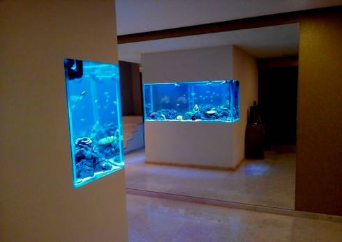 ADn's Saltwater aquarium : Corredor, hall e escadas  por ADn Aquarium Design
