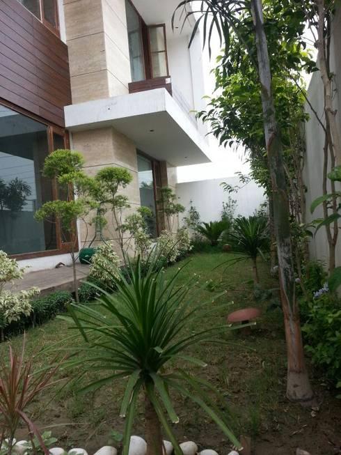 Residential interiors:  Garden by Ingenious