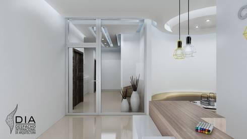 Acceso a Consulta.: Oficinas y tiendas de estilo  por DIIA