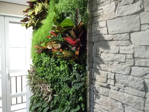 Jard n vertical en vivienda particular de sevilla de for Jardin vertical sevilla