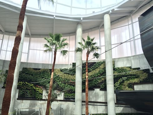 Jardines verticales sevilla awesome jardn vertical en for Jardin vertical sevilla