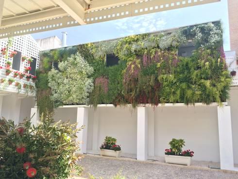 Jard n vertical en antiguas bodega mora de terapia urbana for Bodegas para jardin chile