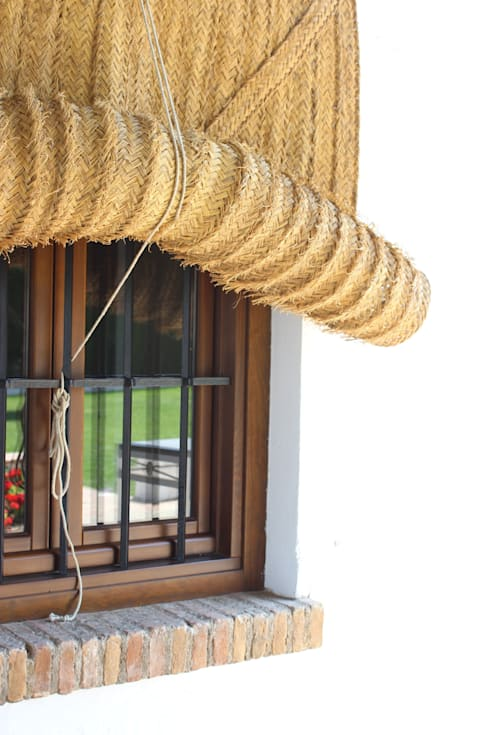 Windows & doors  by Conely