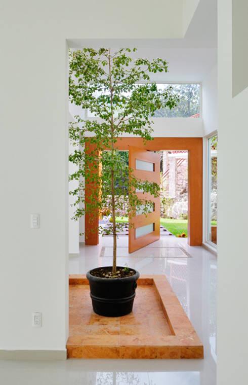 puerta giratoria : Pasillos y recibidores de estilo  por Excelencia en Diseño