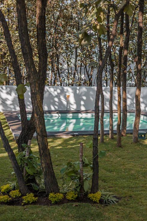 Bosques de Bugambilias: Jardines de estilo moderno por 2M Arquitectura