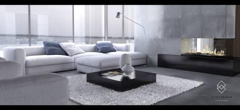 Sala: Salas de estilo minimalista por Elias Braun Architecture