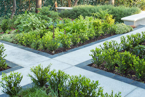Classic Buxus hedging around herb beds: classic Garden by Red Daffodil