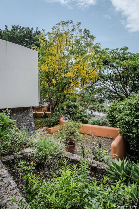 CASA CUERNAVACA /JOSE PABLO QUIROZ :  de estilo  por Oscar Hernández - Fotografía de Arquitectura