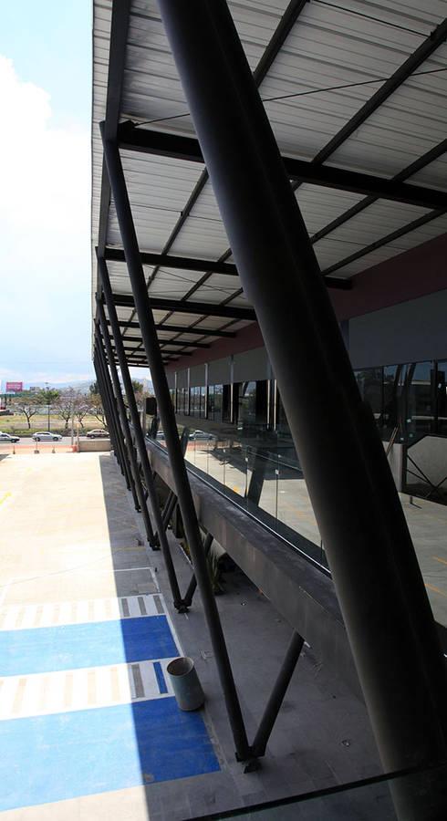 Plaza Básica: Pasillos y recibidores de estilo  por PASQUINEL Studio