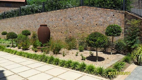 LARGE FORMAL GARDEN IN GILLITTS: modern Garden by Paul's Plantscapes