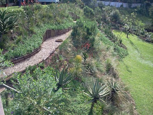 AN INDIGENOUS KLOOF GARDEN: country Garden by Paul's Plantscapes