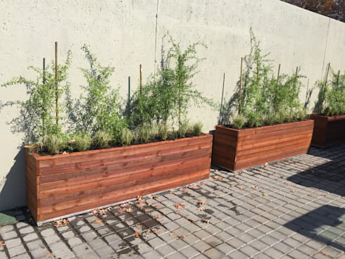 PLANTER BOXES IN WOOD:  Garden  by Oxford Trellis