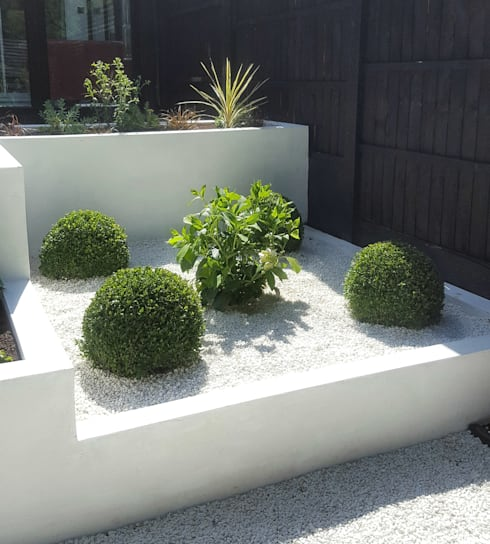 Buxus Spheres and Hydrangea:  Garden by Gardenplan Design