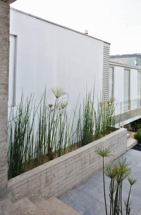 Jardines de estilo  por ESTUDIO BASE ARQUITECTOS