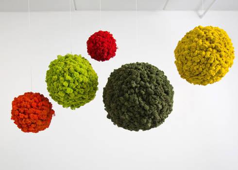 Vorstellung unserer Produkte: Pflanzen- und Moosbilder von styleGREEN: ausgefallene Wohnzimmer von FlowerArt GmbH | styleGREEN