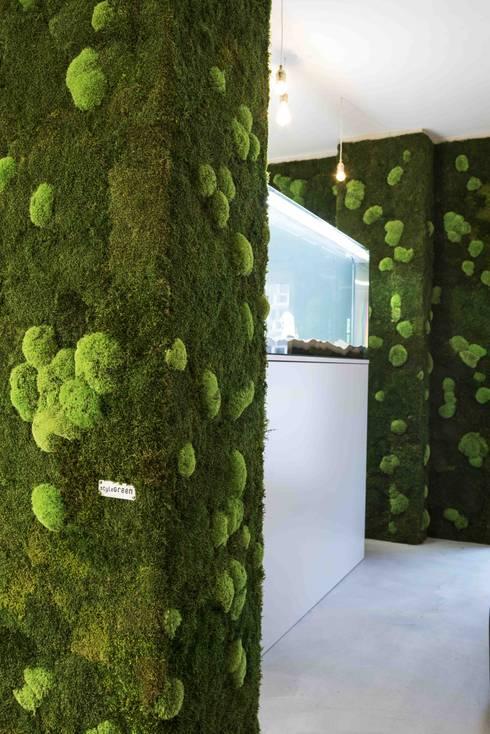 Vorstellung unserer produkte pflanzen und moosbilder von for Style green