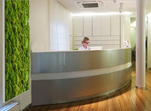 Vorstellung unserer Produkte: Pflanzen- und Moosbilder von styleGREEN: moderne Arbeitszimmer von FlowerArt GmbH | styleGREEN
