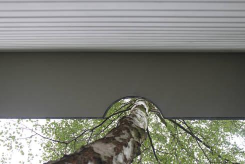 roof: modern Houses by brandt+simon architekten
