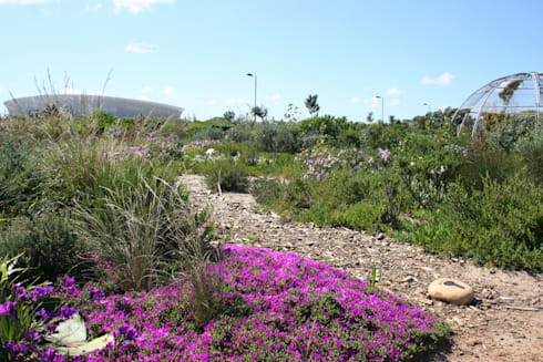 Biodiversity Garden, Green Point Park:  Event venues by Urban Landscape Solutions