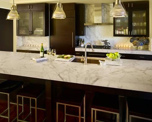 Metropolitan Loft: classic Kitchen by Andrea Schumacher Interiors