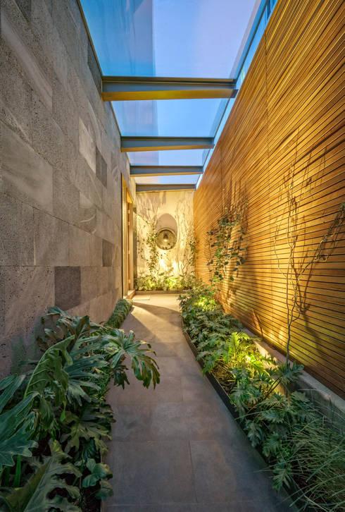 Casa CSF: Pasillos y recibidores de estilo  por Lopez Duplan Arquitectos