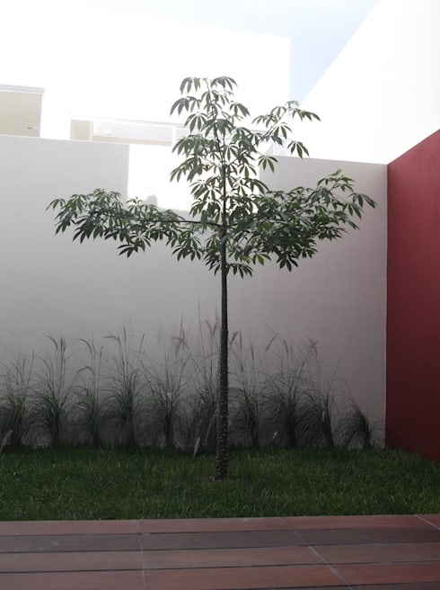 CASAS XOCOC-ATL ARQUIMIA ARQUITECTOS: Jardines de estilo moderno por Arquimia Arquitectos