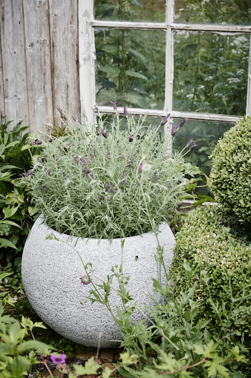 Garden  by Capi Europe