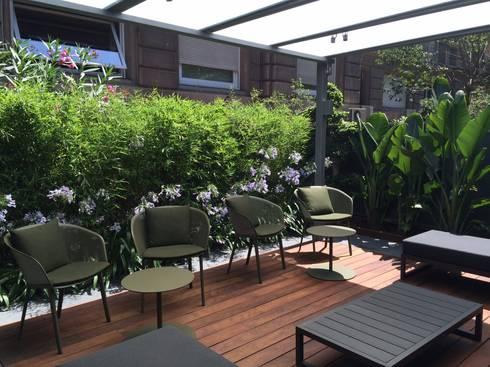 Jardin en barcelona de buresinnova s a homify for Jardines pequenos techados