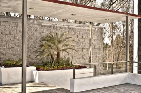 JARDINERA DE ACCESO: Jardines de estilo minimalista por ArqCubo
