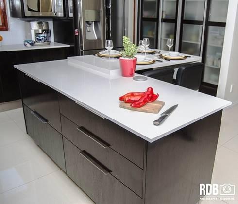 Dark Mahogany Kitchen : modern Kitchen by Ergo Designer Kitchens and Cabinetry