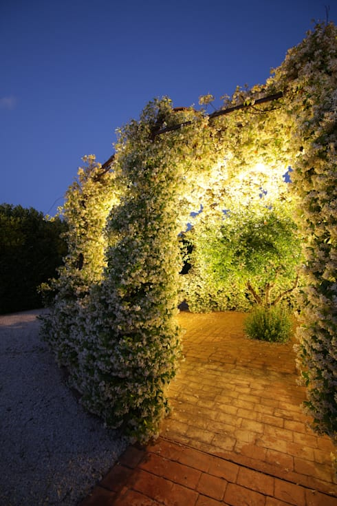 modern Garden by studioSAL_14
