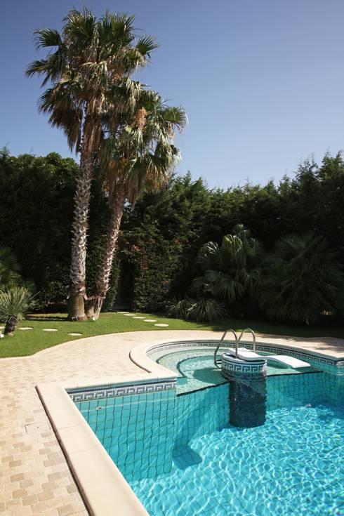 modern Pool by studioSAL_14