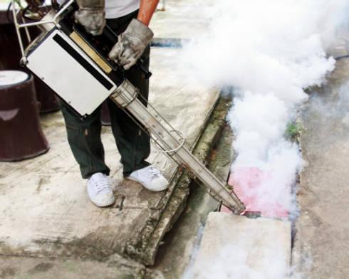 Fumigation:   by Pest Control Pretoria