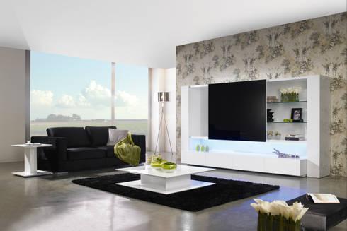 Mobiliário de sala de estar Living Room Furniture www.intense-mobiliario.com  TERRIER : Sala de estar  por Intense mobiliário e interiores;