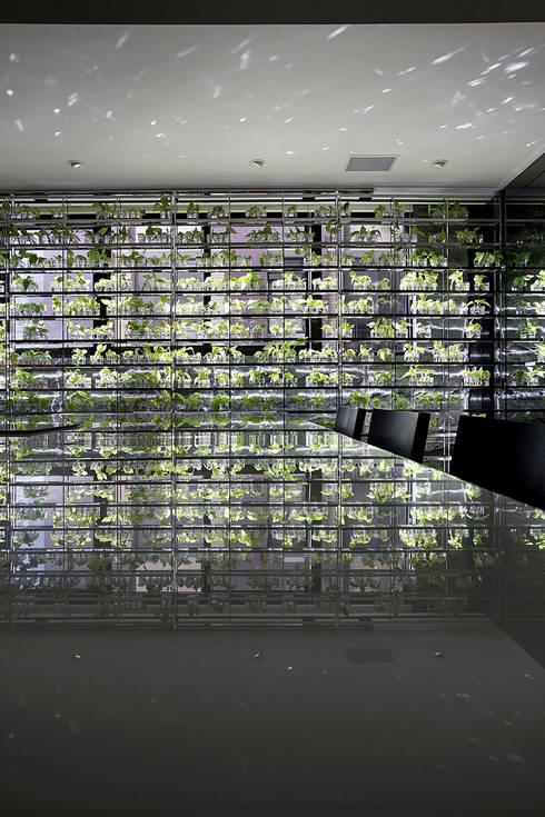 【大明大放 | Bright, Open space】:  廚房 by 天坊室內計劃有限公司 TIEN FUN INTERIOR PLANNING CO., LTD.