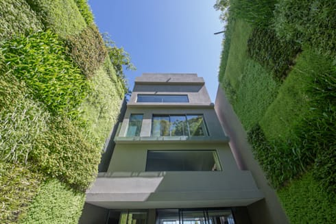 Outdoor Vertical Garden on Kloof Road: modern Houses by Living Green Walls