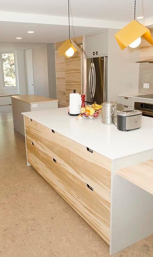 New Edinburgh Renovations:  Kitchen by Jane Thompson Architect